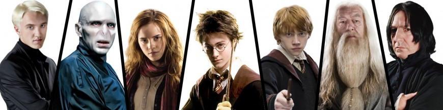 Bacchette Harry Potter