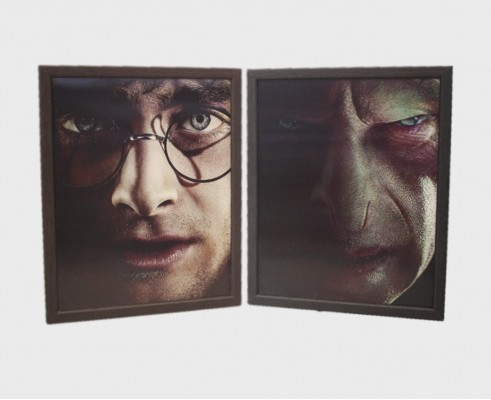 HARRY POTTER - Harry VS Voldemort - Quadro Lenticolare 3D Doppia Immagine