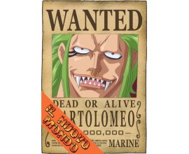ONE PIECE - Wanted Portgas D. Ace